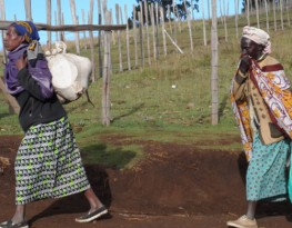 Stop the illegal eviction of the Sengwer community, MRG urges Kenyan government