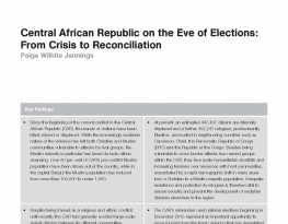 Central African Republic on the Eve of Elections: From Crisis to Reconciliation
