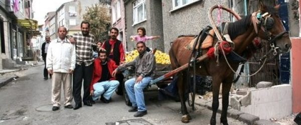 Turkey: Housing and education rights for Roma