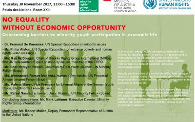 No equality without economic opportunity – overcoming barriers to minority youth participation in economic life