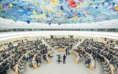 HRC45 – MRG raises alarm at the crackdown on the human rights movement in Egypt
