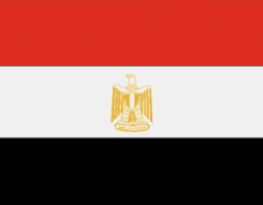 UPR of Egypt - MRG's submission