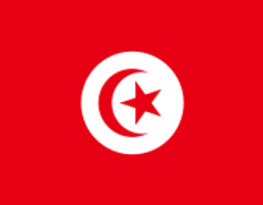 UN Committee to review civil and political rights in Tunisia – MRG's submission