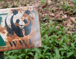 Violent Conservation: WWF's Failure to Prevent, Respond to and Remedy Human Rights Abuses Committed on its Watch