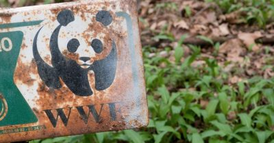 MRG briefing highlights WWF's complicity in conservation-related Human Rights abuses