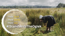 Tell President Kenyatta of Kenya to stop illegal handouts of Ogiek lands
