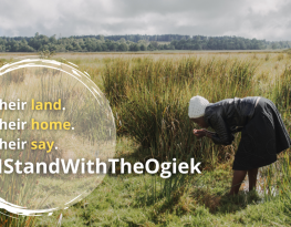 Tell President Kenyatta of Kenya to stop illegal handouts of Ogiek lands