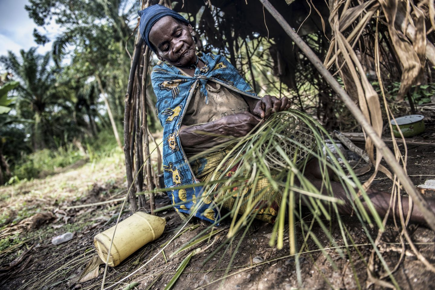 Statement: Protected areas in the Democratic Republic of Congo – a broken system