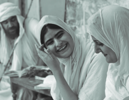 Online course: Minority Rights and Advocacy Toolkit (closing date: 7 February)