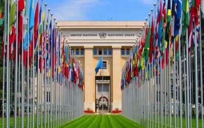 MRG joins massive call for action on Egypt at the UN Human Rights Council