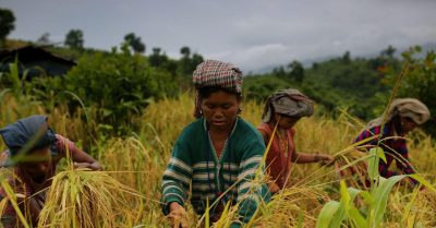 World Food day: How much do you know about the food habits of minorities and indigenous peoples?