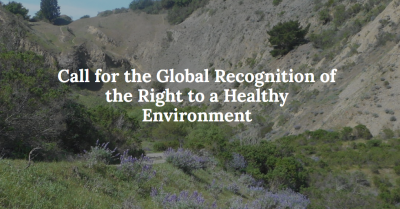 Call for the Global Recognition of the Right to a Healthy Environment